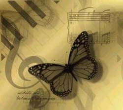 borboleta-envelhecida-pequena